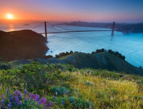 Cali Comparables: What $2.5 Million Buys You in Marin County