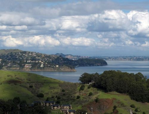 Cali Comparables: What $2.9 Million Buys You in Marin County