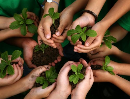 2017 Earth Day Events in California
