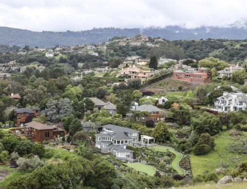 Median Price for High-End Homes in Marin County Increases in January, While Sales Steady